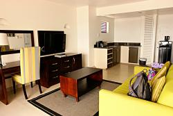 Downstairs living area and kitchenette in the penthouse