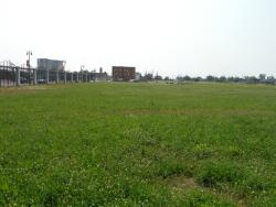 Tiger Stadium Site