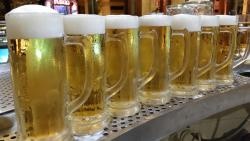 Cervecería Gambrinus Port d'Alcudia