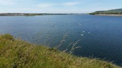 RSPB Hodbarrow Nature Reserve