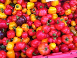 Burlington Farmers' Market