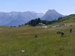 Agriturismo Fattoria Pian dell'Alpe