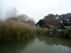 vista al lago artificial