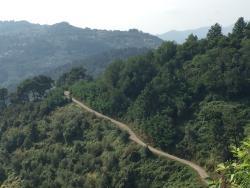 Sentiero n. 7b - Via delle Ginestre