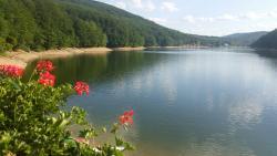 Valiug Lake