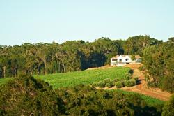 Credaro Wines Cellar Door