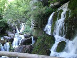 Area Natura Rio Bianco