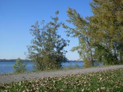 Parc Marie-Victorin