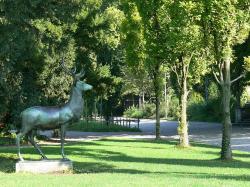 Platzspitz Park