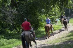 Uncle Ike's Trail Ride