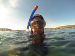 Wavesweeper Sea Adventures