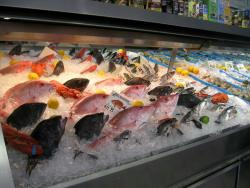 The Seafood Shop