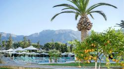 瓦爾迪橄欖花園飯店