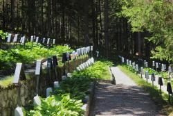 Cimitero Di Guerra Sorgenti