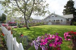 Paradise Suites & Rentals