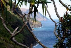 Seductions of Kauai Gallery
