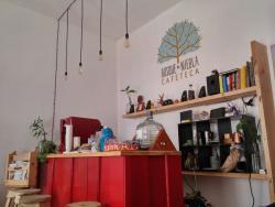 Bosque De Niebla Cafeteca