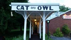 Cat and Owl Steak and Seafood
