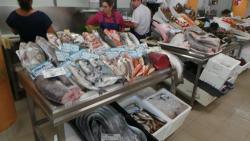 Cascais Fish Market