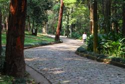 Parque Guarapiranga