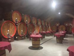 13 Jul-Plantaze Vineyard