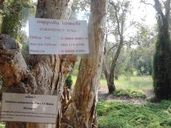 Rayong Botanical Garden