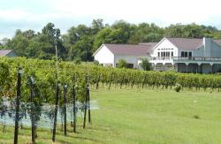 Narmada produces award-winning Virginia wines in Rappahannock County