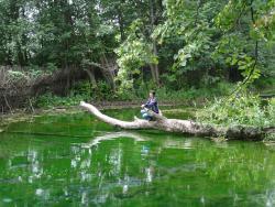 Blue Lakes