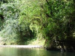 Arecibo River