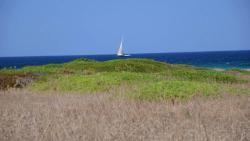 Parco Naturale Regionale Isola di S.Andrea e Litorale di Punta Pizzo