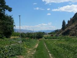 Hillside Orchards U-Pick and Farm