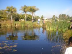 Jardín botanico de la Universidad de Talca