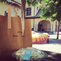 Ayla Real Food