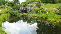 Botanical Gardens (Botanisk Hage og Museum)