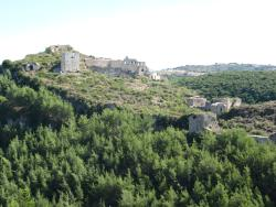 Saladin (Selahedin) Citadel