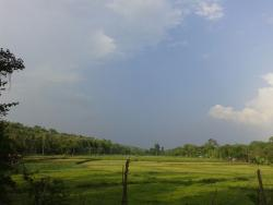 "The Panoramic View from the Cottage ""Basil"""
