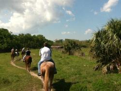 Shenandoah Stables Horseback Riding
