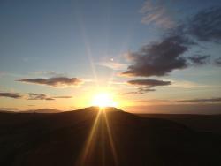 Experience Scotland's Wild day Tours