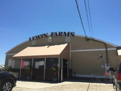 Lewin Farms