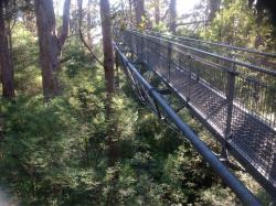 Tree Top Walk Motel