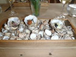 Poached oysters