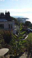 Dalkey Island View