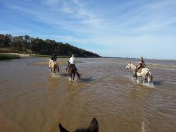 Cabalgatas en Uruguay - Riding Tours