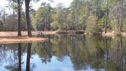 Lee State Park