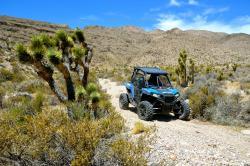 Zero1 Desert Adventures
