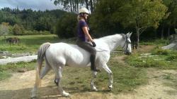 Pegasus Park Equestrian Adventure Tours