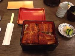 Eel Cuisine Notoya