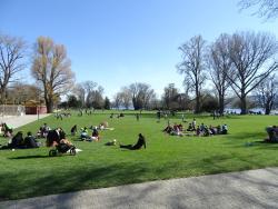 Parkanlage Zuerihorn