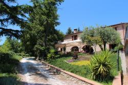 Ristorante dell'Agriturismo Biologica Villa Rosa