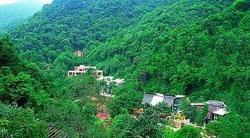 云天海原始森林度假村